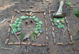 Land art vlese Ochoza